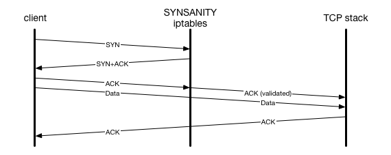 synsanity packet flow